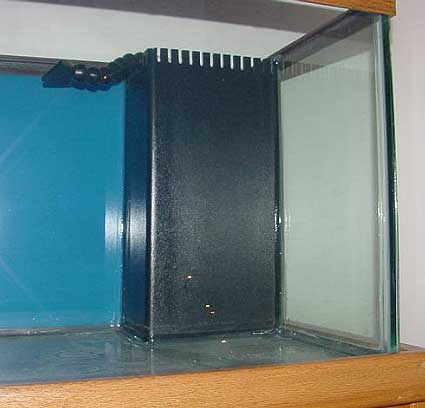Figure 5 A Mature Ecosystem 174 Filter Sump Photo Courtesy