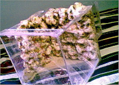 Aquascaping with Insulation Foam by Eric Meier - Reefkeeping com