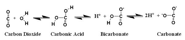 how to make carbonate bicarbonate buffer