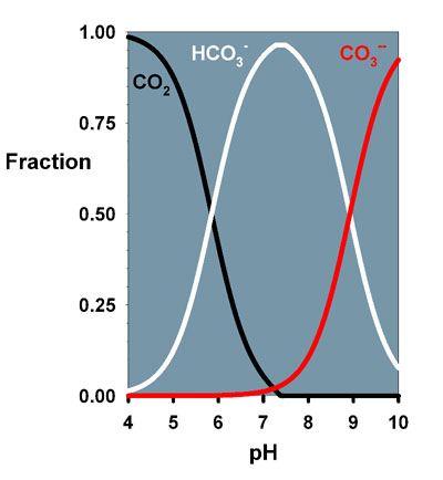 ph and buffer relationship help