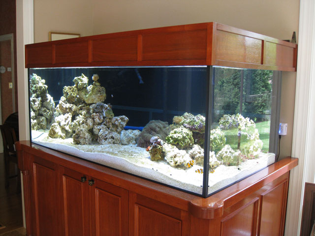 Reefkeeping Magazine Building An Aquarium Stand